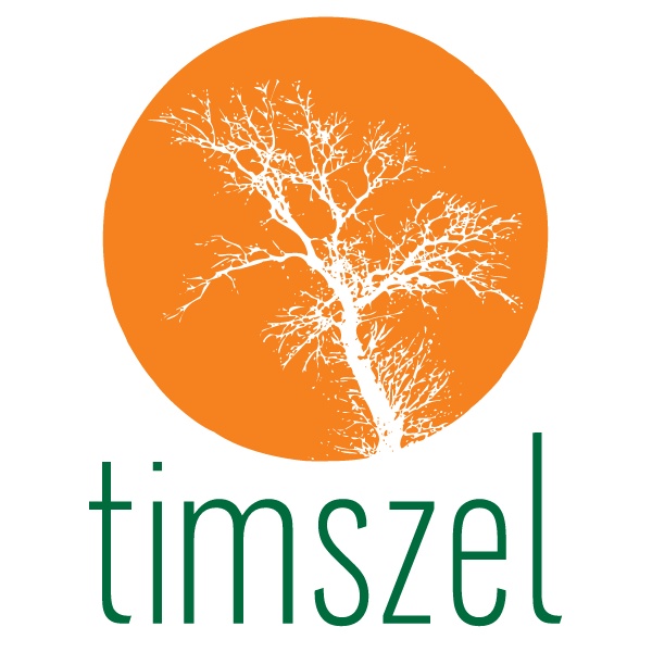 Fundacja Rozwoju Przestrzeni Społecznych i Kulturalnych Timszel